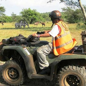 Game viewing and adventure ride safaris at Lake Mburo National Park in Uganda.